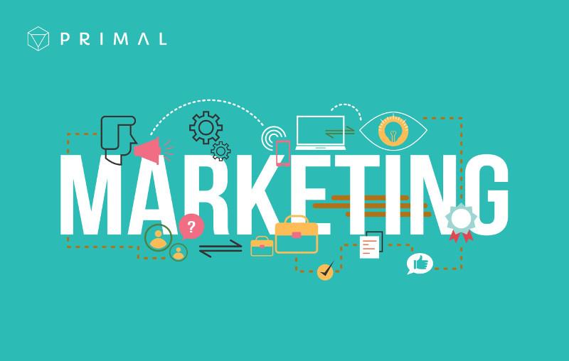 báo cáo thực tập marketing mix