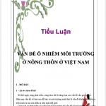 Tiểu luận vấn đề ô nhiễm môi trường ở nông thôn Việt Nam