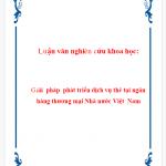 Luận văn nghiên cứu khoa học: Giải pháp phát triển dịch vụ thẻ tại ngân hàng thương mại nhà nước Việt Nam